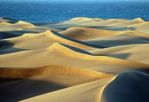36521_gran_canaria_playa_del_ingles